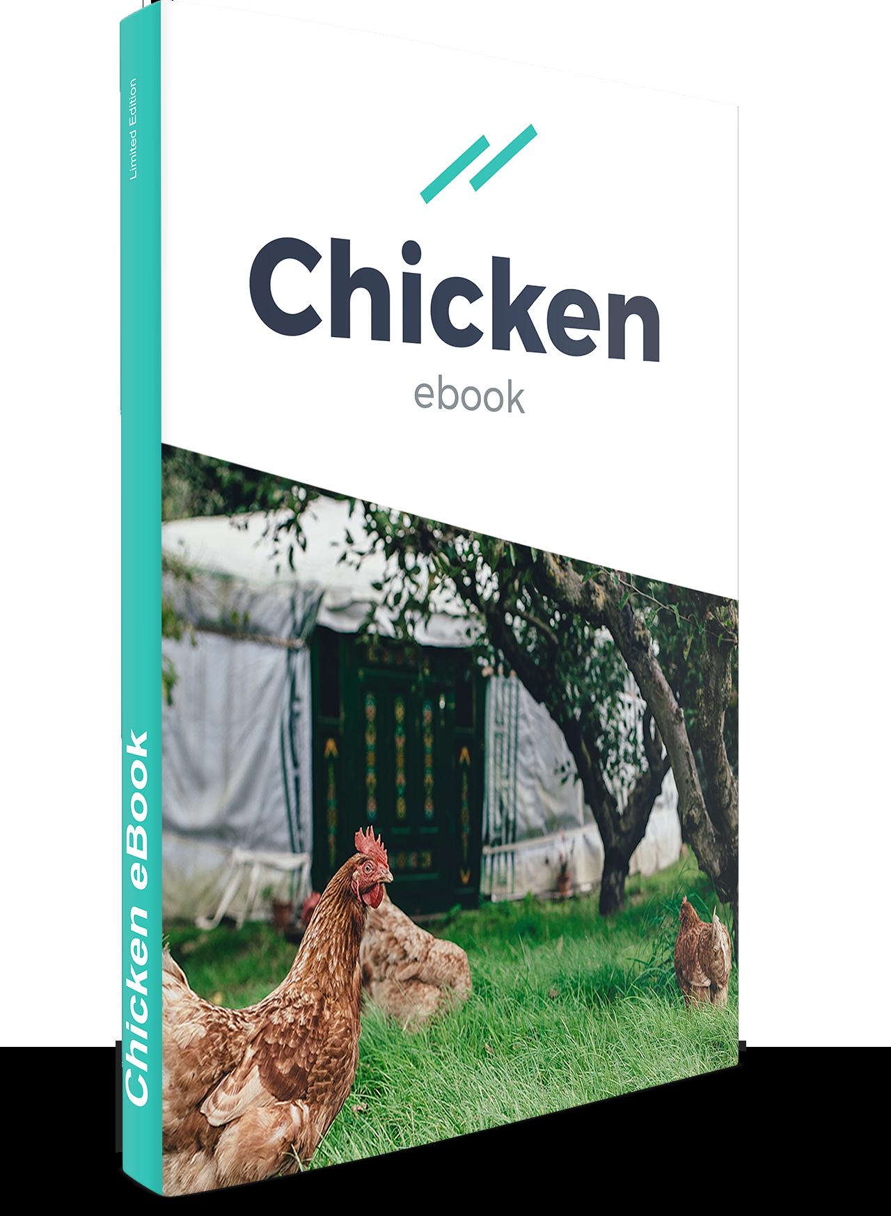 Act2 Chicken Ebook